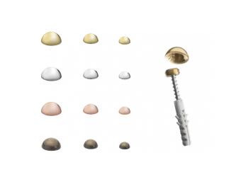 Borchia coprivite in ottone - Accessori per targhe - Ciak Targhe